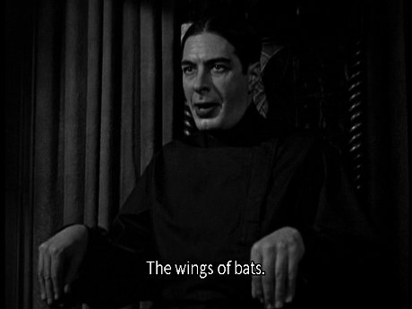 The wings of bats.
